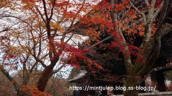 minIMG_2905.JPG